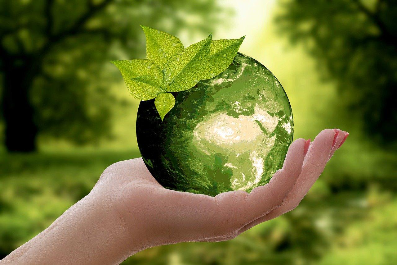 Ações Sustentáveis Na Rotina Infantil